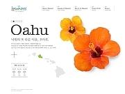 하와이 관광청